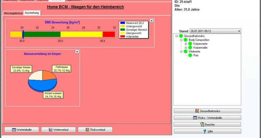 BMI GMON Software