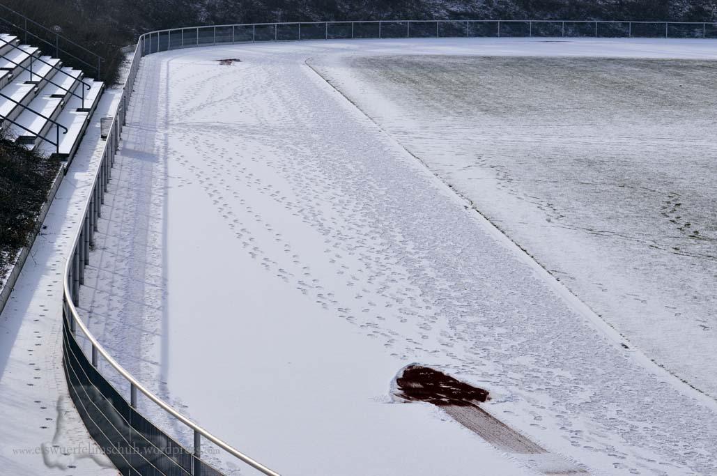 BSV 92 Winterlaufserie Berlin Lauf 3 (33)