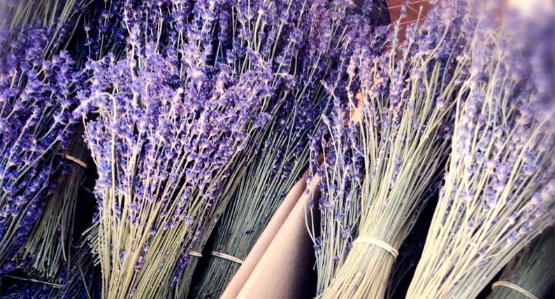 Cannes-Gemusemarkt-Obst-Lavendel-Krauter