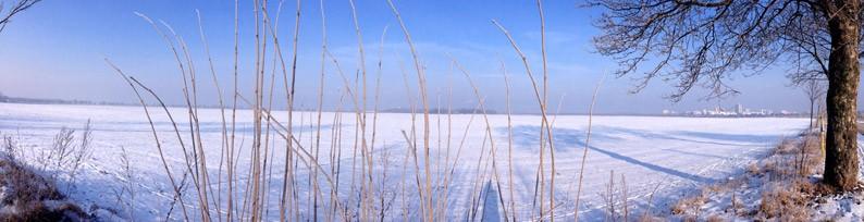 Berlin-Brandenburg-Kälte-Kristalle-Gräser-Winter