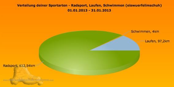 Sportarten_Distanz_Jan13