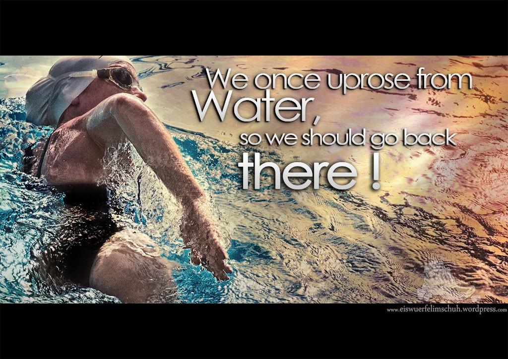 Schwimm Sprüche