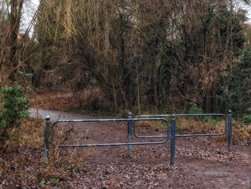 Laufgeschichten-RRDay-Birke-Retro-Lilienthal-Denkmal-Lichterfelde