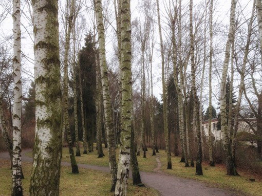 Laufgeschichten-RRDay-Birke-Retro-Lilienthal-Denkmal