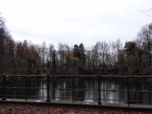 Laufgeschichten-Teich-RRDay-Birke-Retro-Lilienthal-Denkmal-Lichterfelde