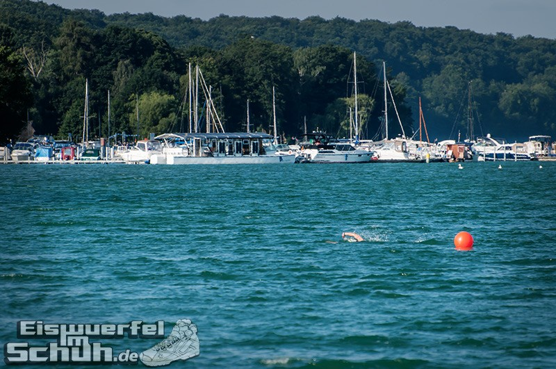 Eiswuerfelimschuh Triathlon Werbellin Werbellinsee Safadi Swim Bike Run (68)