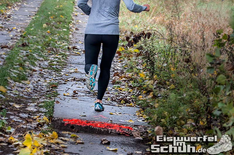 Eiswuerfelimschuh Diedersdorf Lauf Wettkampf (24)