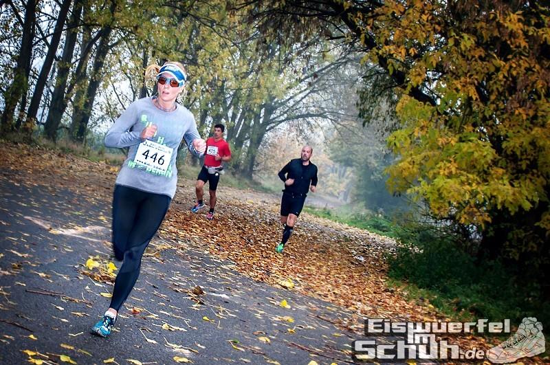 Eiswuerfelimschuh Diedersdorf Lauf Wettkampf (39)