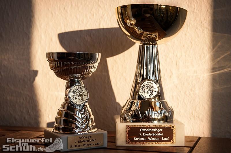 Eiswuerfelimschuh Diedersdorf Lauf Wettkampf (53)