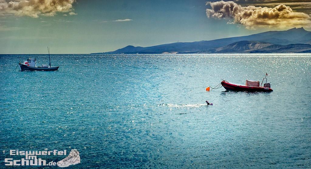 Eiswuerfelimschuh Triathlon Schwimmen Anfaenger 2XU ZOGGS GARMIN FORERUNNER TOMTOM (4)