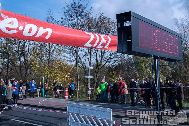 Eiswuerfelimschuh Teltowkanal Halbmarathon Lauf Wettkampf (12)