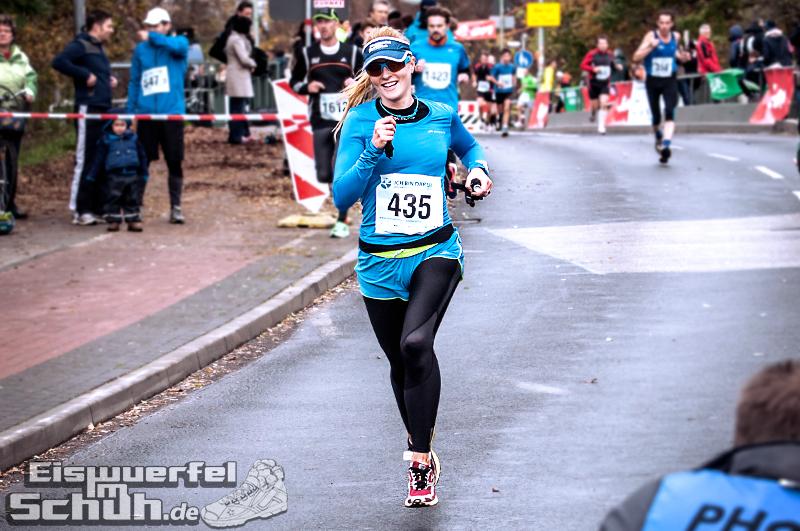 Eiswuerfelimschuh Teltowkanal Halbmarathon Lauf Wettkampf (14)