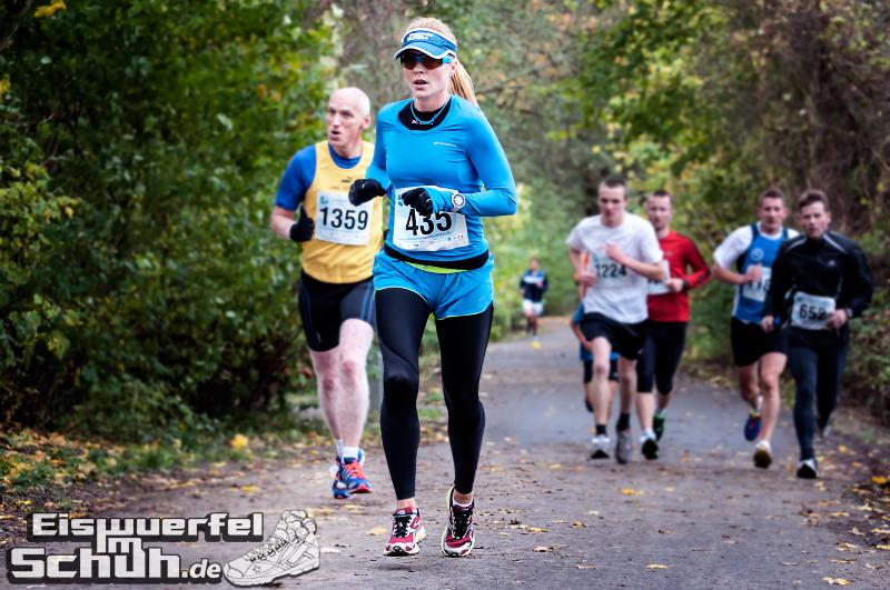 Eiswuerfelimschuh Teltowkanal Halbmarathon Lauf Wettkampf (9)