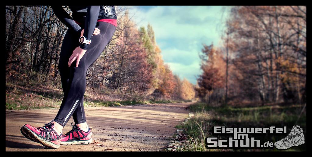 Eiswuerfelimschuh Garmin Forerunner 620 GPS-Uhr Fitness-Uhr Laufdynamik Fitness Kennzahlen (19)