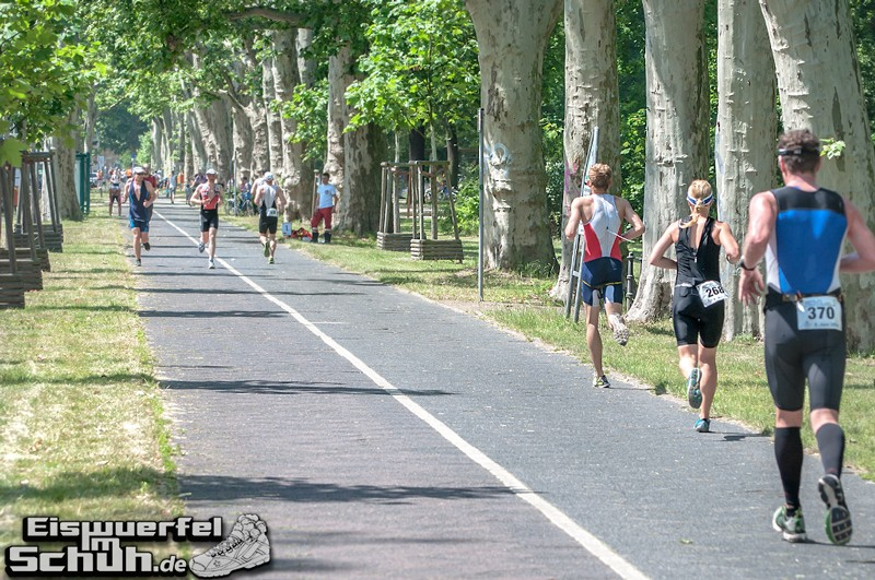 EISWUERFELIMSCHUH – BERLIN Triathlon 2014 Treptow Hauptstadttriathlon (181)