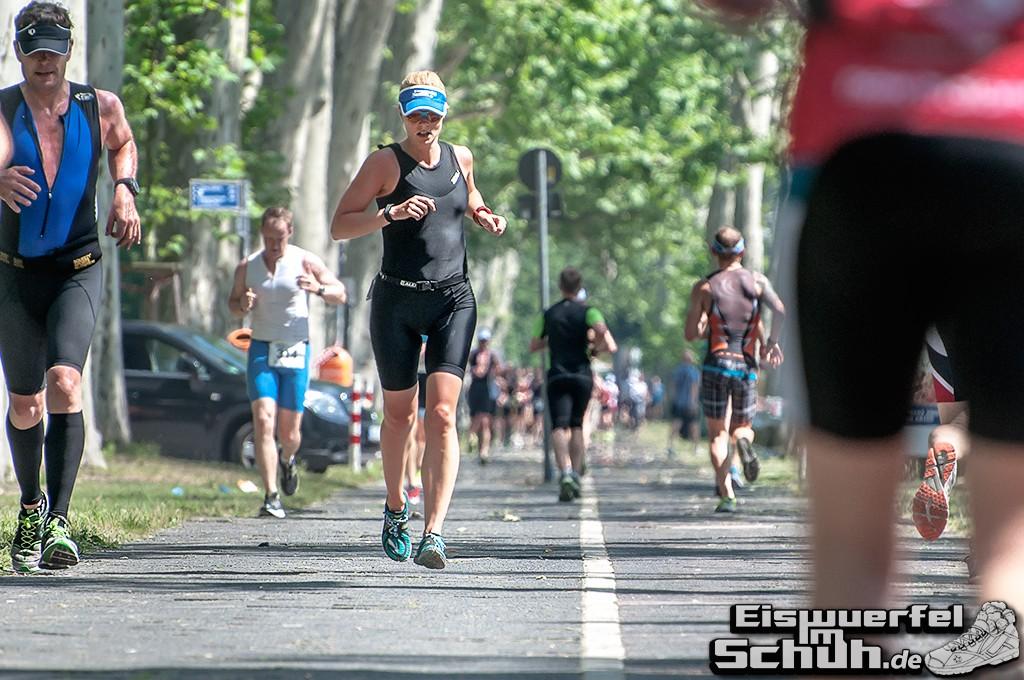 EISWUERFELIMSCHUH – BERLIN Triathlon 2014 Treptow Hauptstadttriathlon (182)