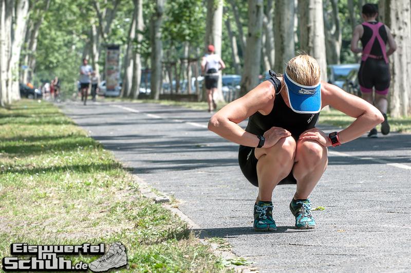 Berlin Triathlon: sumpfgrüne Plörre, Saharaföhn, glühender Asphalt - Teil II