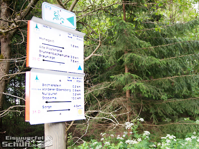 Eiswuerfelimschuh-Run-Blogger-Camp-Running-Laufen-Harz-Hohegeiß