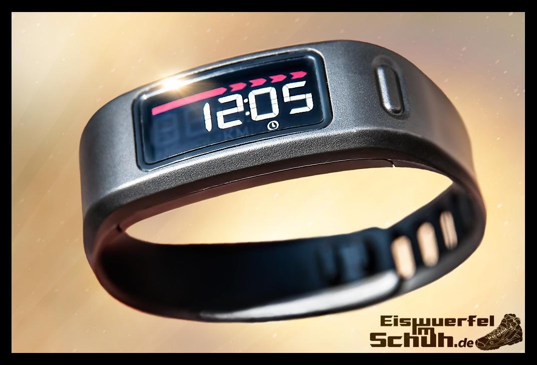 EISWUERFELIMSCHUH - GARMIN Vivofit Fitness Tracker (01)