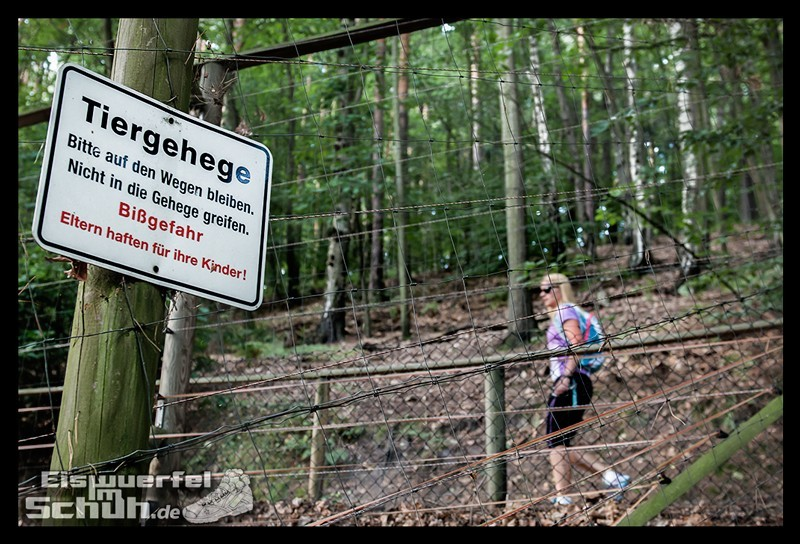 EISWUERFELIMSCHUH – Trail Lauf Saechsische Schweiz Lilienstein Mizuno (39)