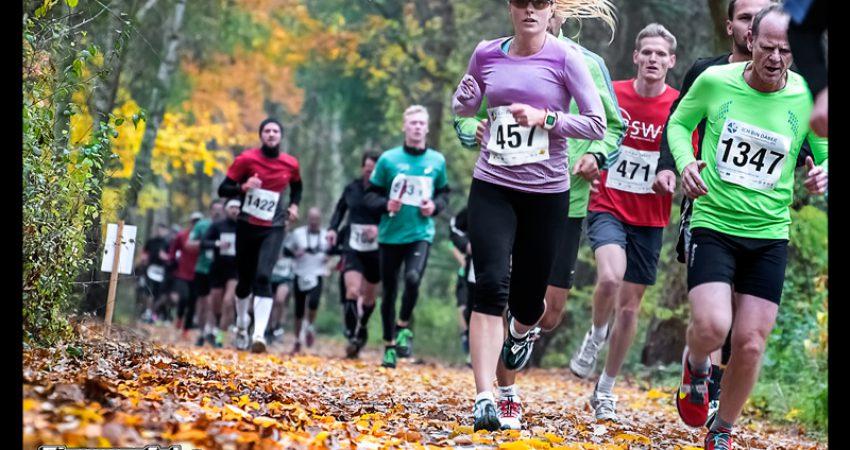 Teltow Halbmarathon: wunderbarer Herbstlauf ohne Titel dafür mit Bestzeit