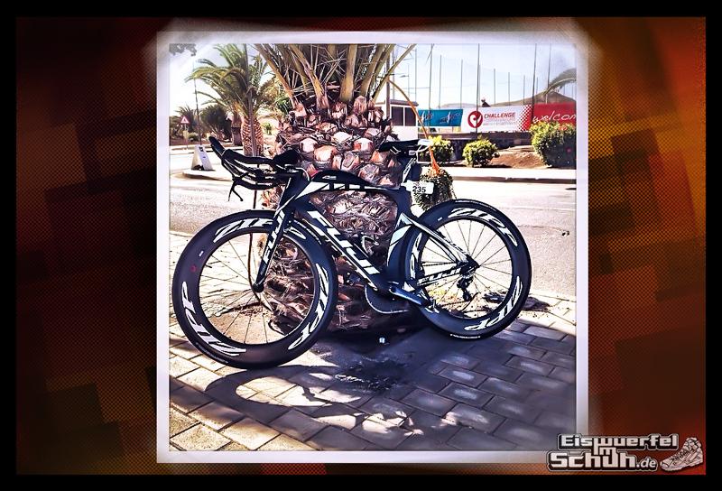 EISWUERFELIMSCHUH – Fuerteventura Challenge 2014 Triathlon Spanien (74)