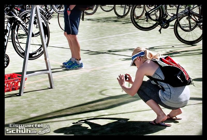 EISWUERFELIMSCHUH – Fuerteventura Challenge 2014 Triathlon Spanien (84)