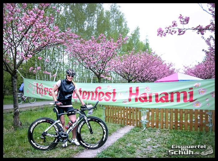 EISWUERFELIMSCHUH - Montags Glück Kirschblütenfest 2015 (2)
