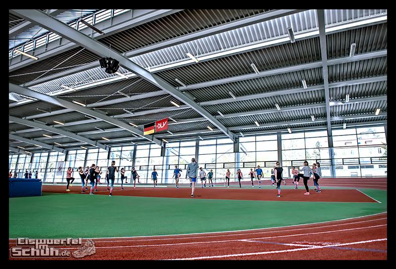 EISWUERFELIMSCHUH – NIKE FREE Hamburg Running Laufen (119)