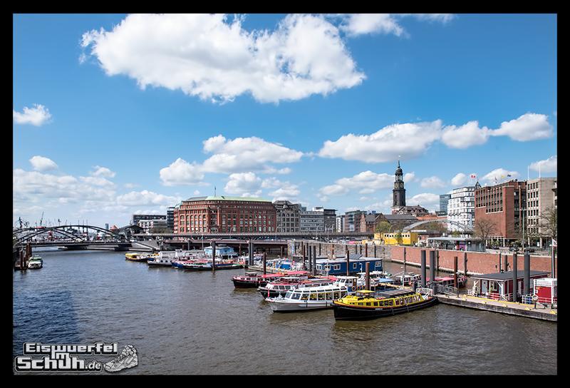 EISWUERFELIMSCHUH – NIKE FREE Hamburg Running Laufen (147)