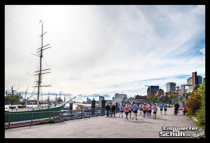EISWUERFELIMSCHUH – NIKE FREE Hamburg Running Laufen (153)