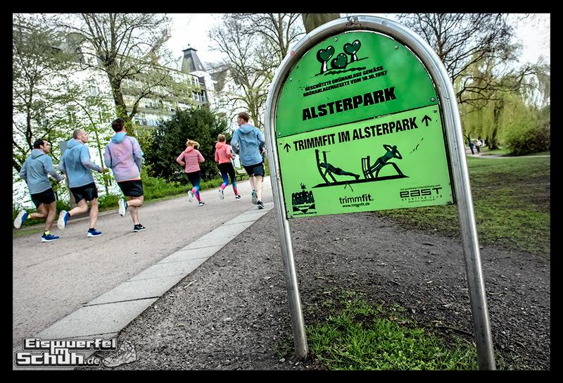 EISWUERFELIMSCHUH – NIKE FREE Hamburg Running Laufen (169)