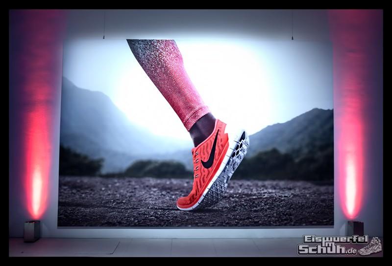 EISWUERFELIMSCHUH – NIKE FREE Hamburg Running Laufen (48)
