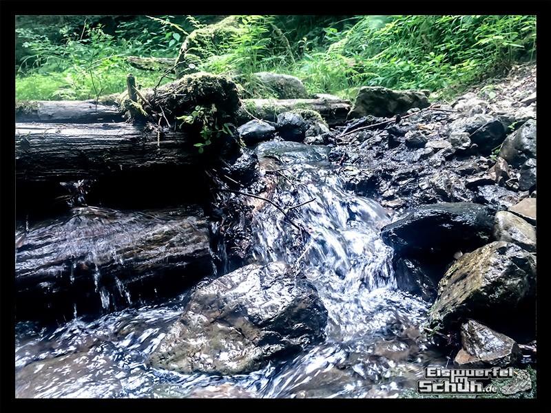 EISWUERFELIMSCHUH – Lauf-Blogger-Camp 2015 (3)