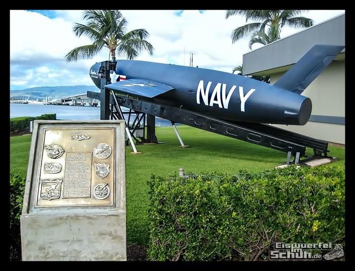 EISWUERFELIMSCHUH – Hawaii Oahu Reise Insel Erlebnisse (18)
