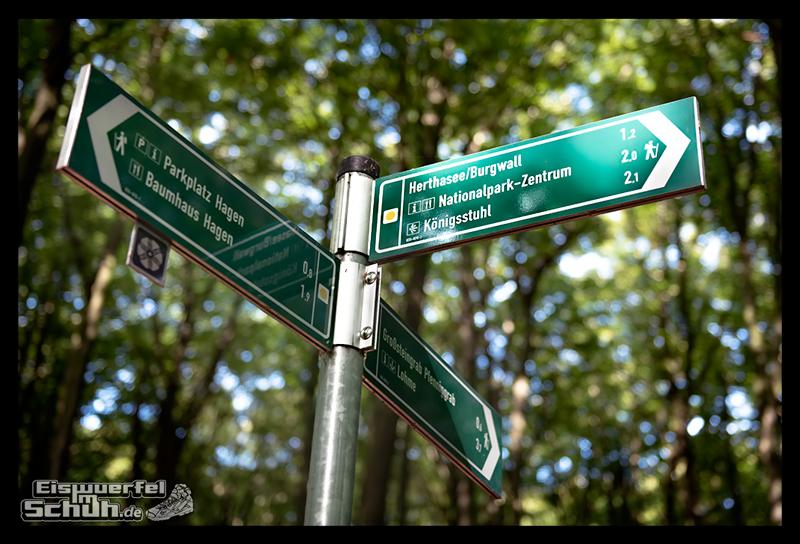 EISWUERFELISCHUH – Ruegen Koenigsstuhl Wald Küste Nationalpark Laufgeschichte (9)