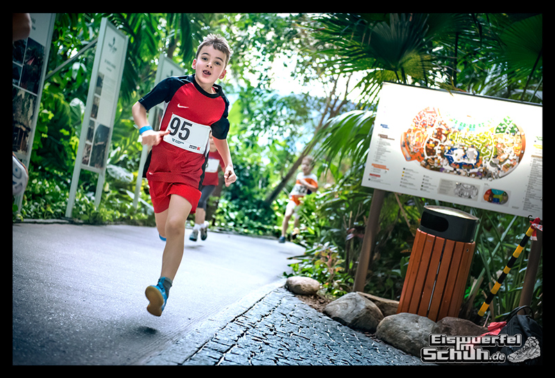 EISWUERFELIMSCHUH – Lauf Tropen Tropical Islands 2015 (91)
