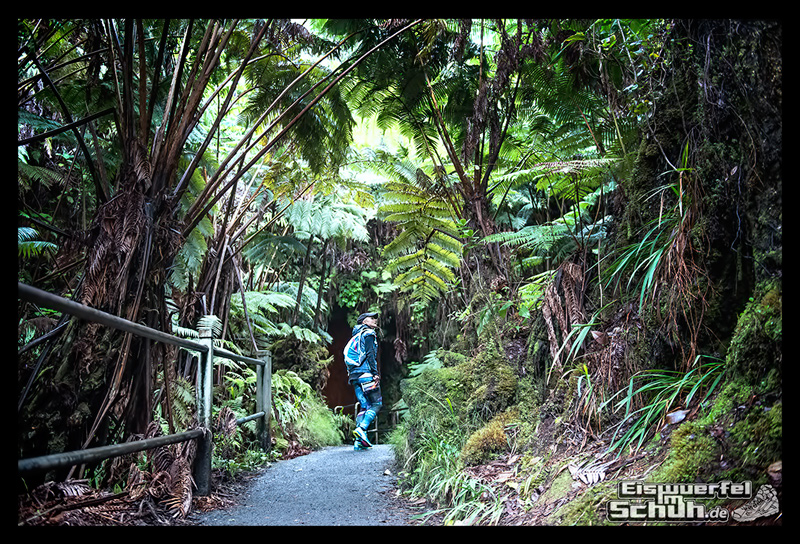 EISWUERFELIMSCHUH – Hawaii Big Island Vulkan Lava Tube National Park (17)