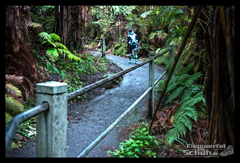 EISWUERFELIMSCHUH – Hawaii Big Island Vulkan Lava Tube National Park (18)