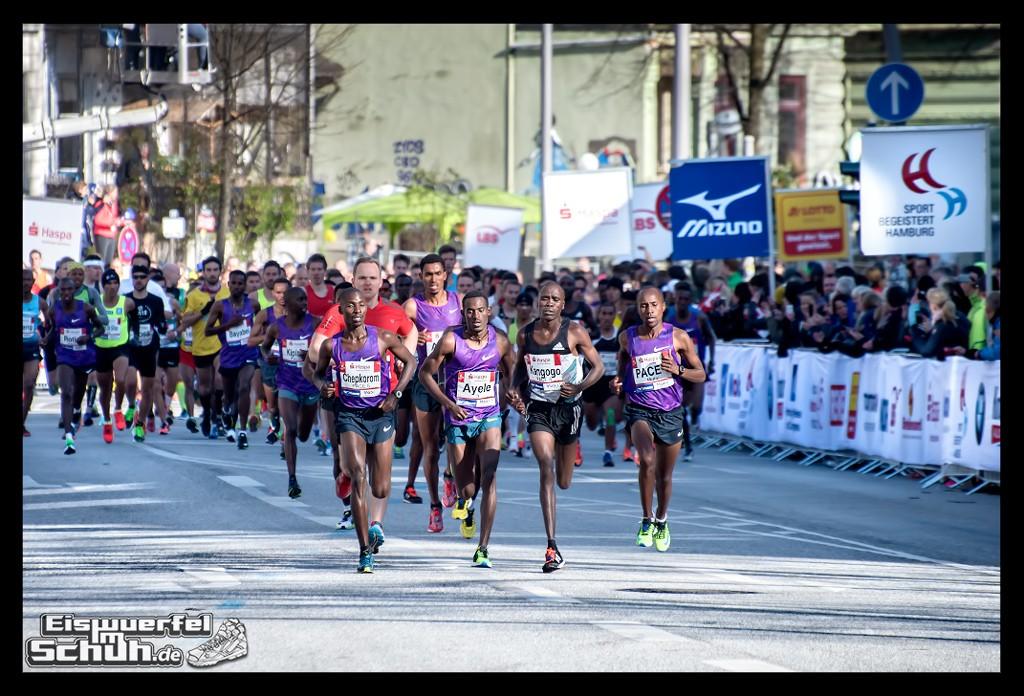 EISWUERFELIMSCHUH – Hamburg Marathon Laufen Haspa Mizuno (12)