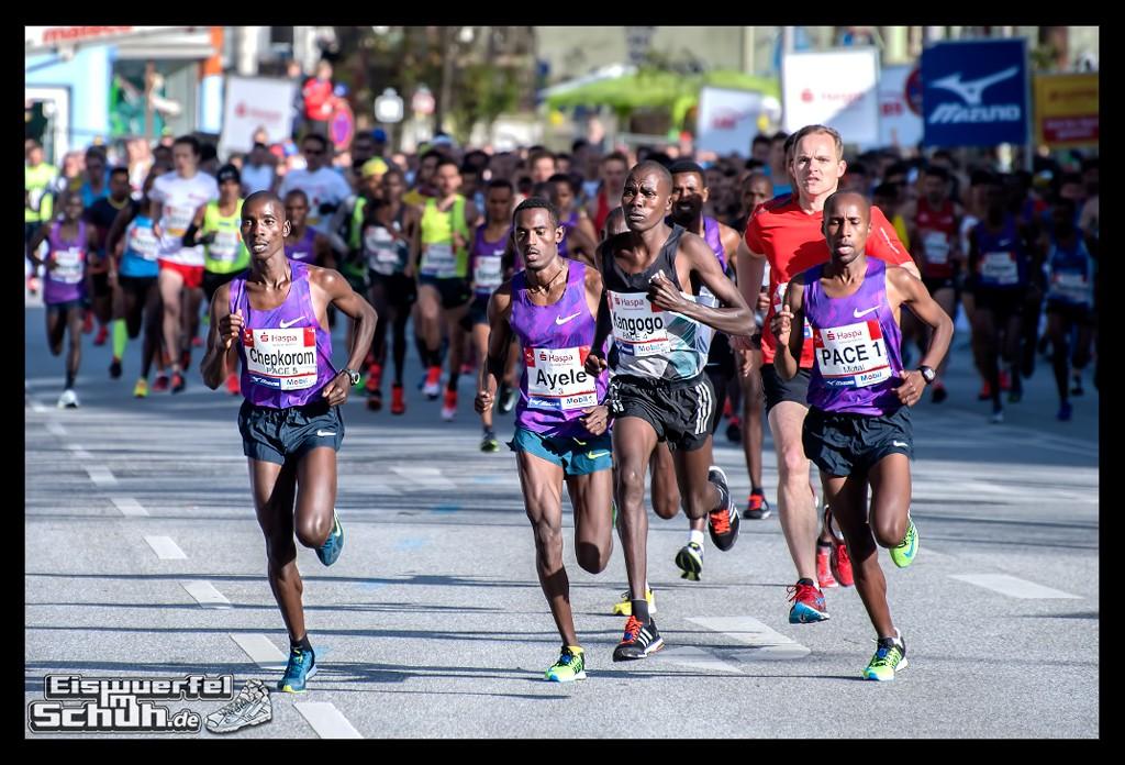 EISWUERFELIMSCHUH – Hamburg Marathon Laufen Haspa Mizuno (13)