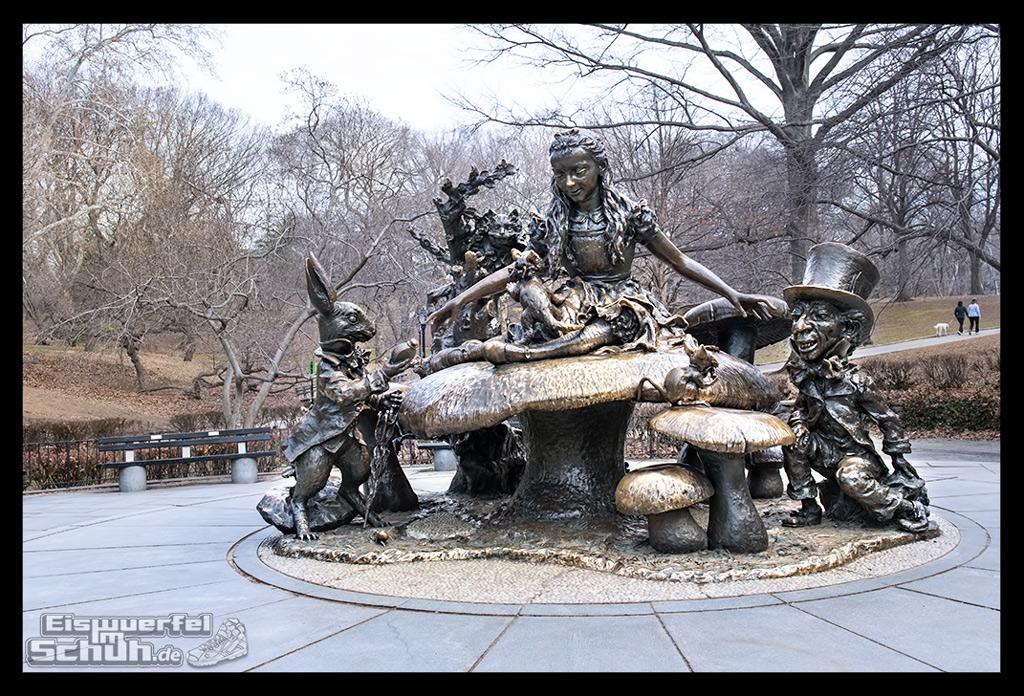 EISWUERFELIMSCHUH – Laufen Im Central Park Von New York (21)