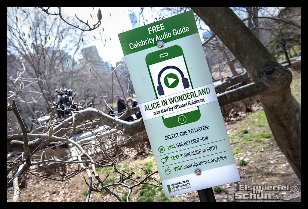 EISWUERFELIMSCHUH – Laufen Im Central Park Von New York (23)