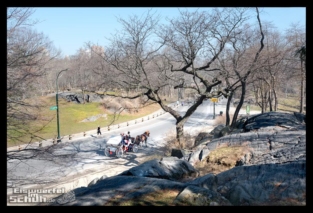EISWUERFELIMSCHUH – Laufen Im Central Park Von New York (30)