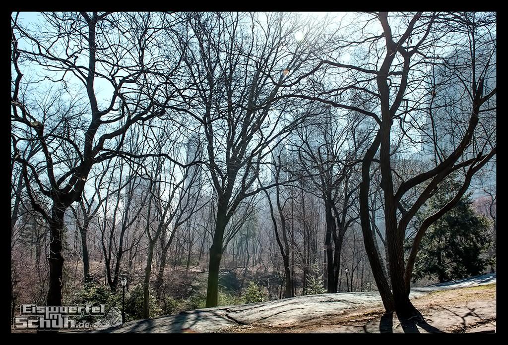 EISWUERFELIMSCHUH – Laufen Im Central Park Von New York (31)