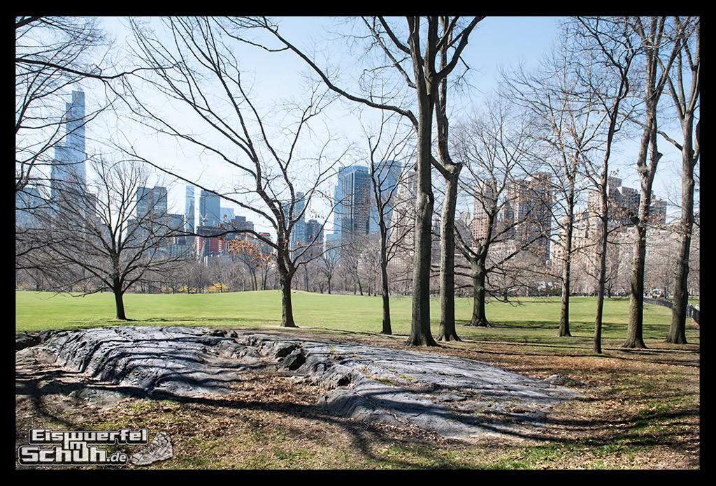 EISWUERFELIMSCHUH – Laufen Im Central Park Von New York (4)