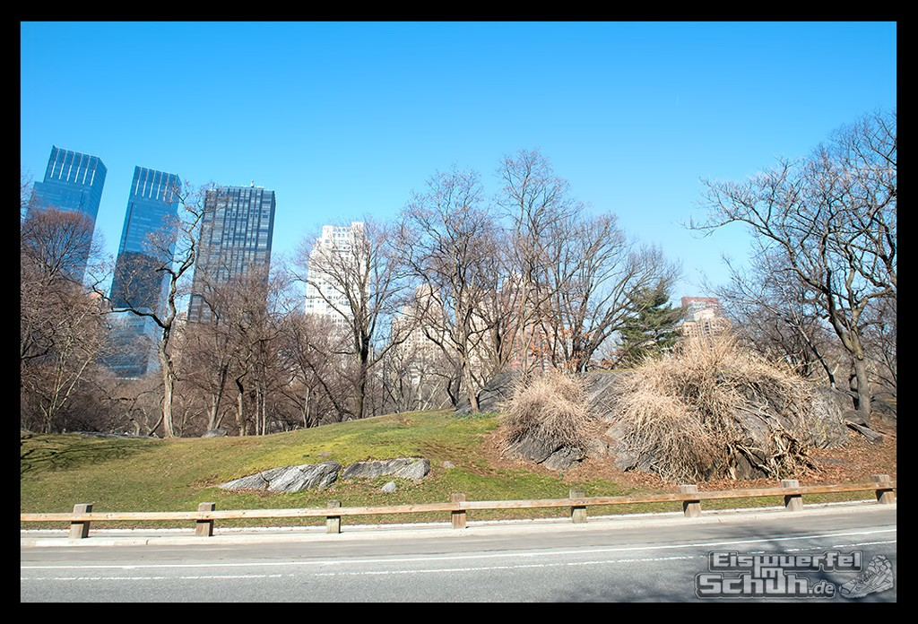 EISWUERFELIMSCHUH – Laufen Im Central Park Von New York (6)
