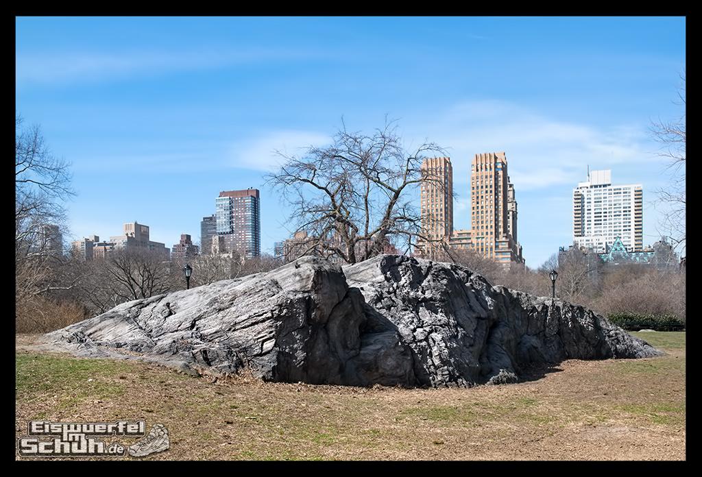 EISWUERFELIMSCHUH – Laufen Im Central Park Von New York (61)