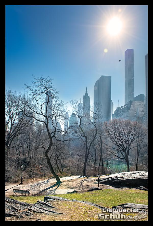 EISWUERFELIMSCHUH – Laufen Im Central Park Von New York (64)