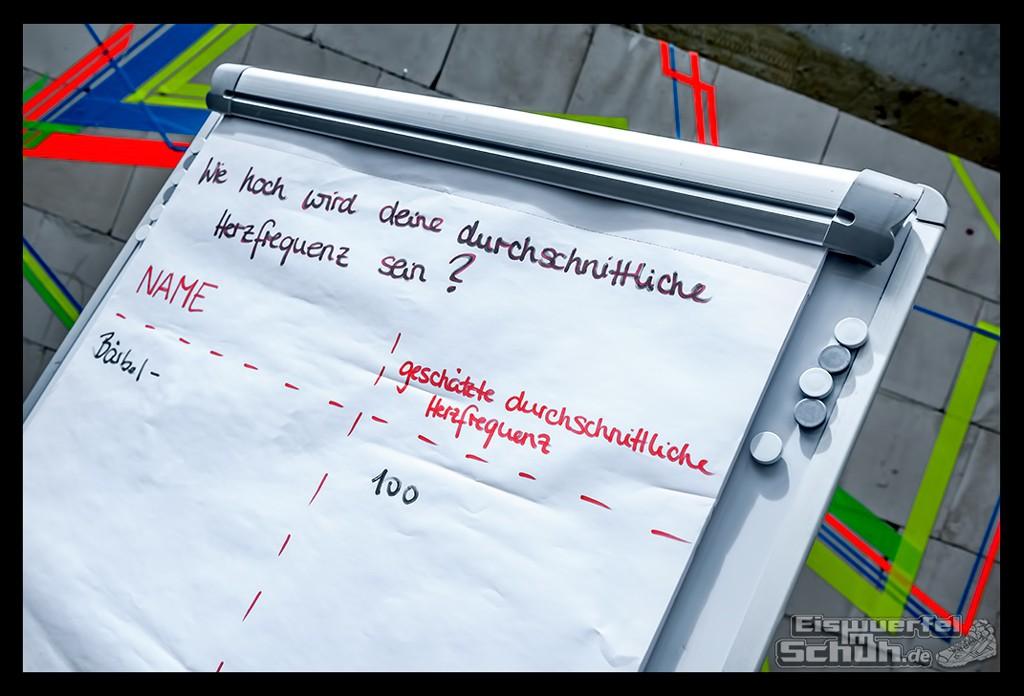 EISWUERFELIMSCHUH – FitBit Jens Voigt Tour de Berlin Fitness Tracker Radsport (7)